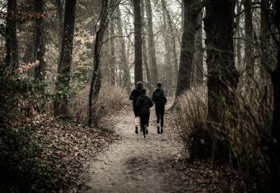 Take a walk, burn calories